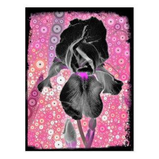 Postal negra del iris