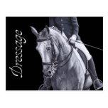 Postal negra y blanca del caballo del Dressage del