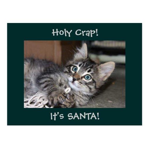 Postal observada azul de Santa del gatito