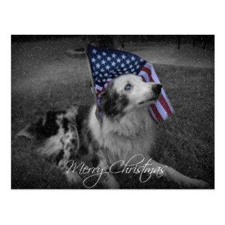 Postal observada azul del perro de la bandera amer