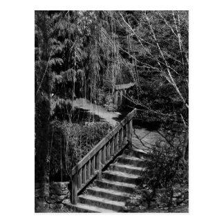Postal ocultada de la escalera del jardín