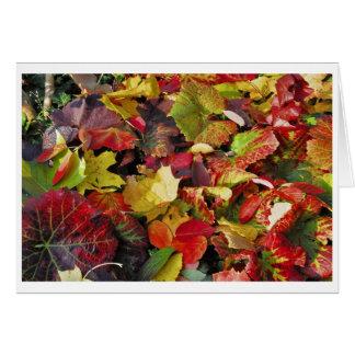 Postal otoño tarjeta de felicitación