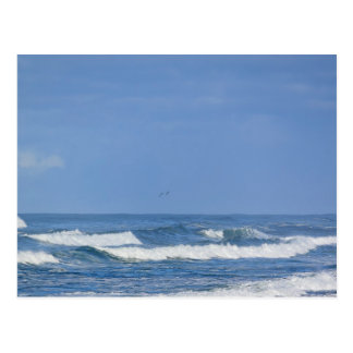 Postal pacífica potente de las olas oceánicas IV