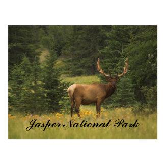 Postal - parque nacional de jaspe
