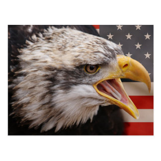 Postal patriótica de la imagen de Eagle