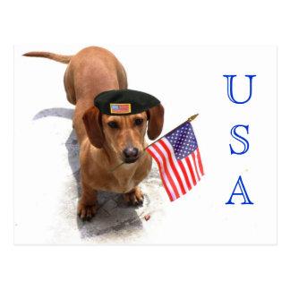Postal patriótica del dachshund de los E E U U