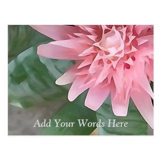 Postal personalizada flor del mensaje de Bromeliad