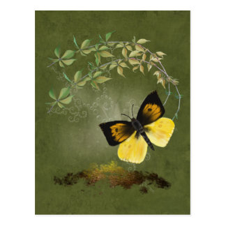 Postal pintada juguetona de la mariposa