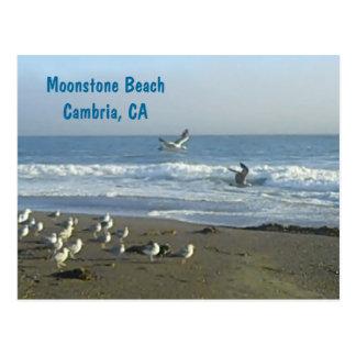 Postal: Playa del Moonstone, Cambria, C Postales