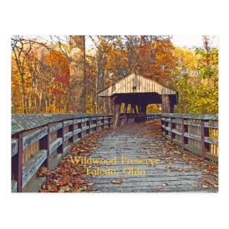 """postal, """"puente cubierto en el coto de Wildwood """" Postal"""
