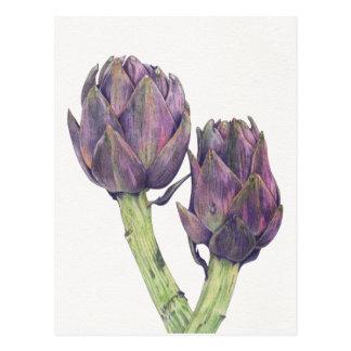 Postal púrpura de las alcachofas