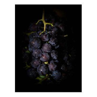 Postal púrpura de las uvas