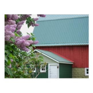 Postal roja de la lila del granero de Michigan de