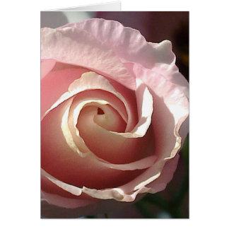 Postal rosa apuesta rosa tarjeta de felicitación