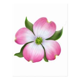 Postal rosada de la flor del Dogwood