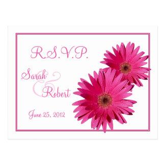 Postal rosada de RSVP de la margarita del Gerbera