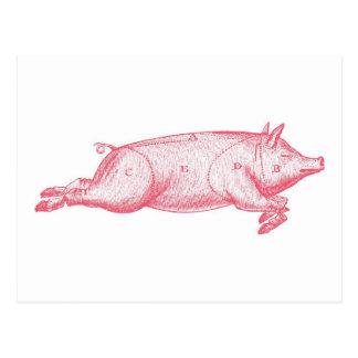 Postal rosada del cerdo