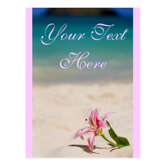 Postal rosada del lirio de la playa