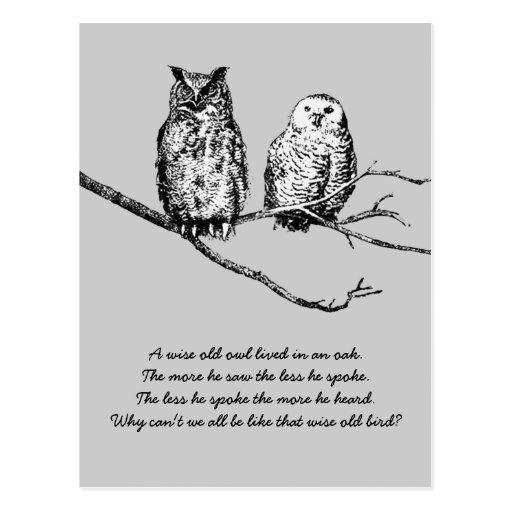 Postal sabia de la sabiduría del búho