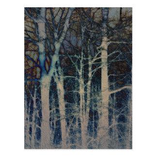 Postal texturizada del extracto del invierno