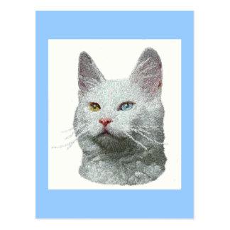 Postal turca del gato del angora