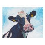 Postal - vaca frisia irlandesa 0254