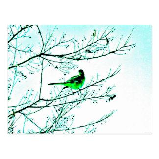 """Postal verde del arte de JTG del """"pájaro"""""""