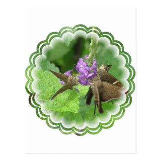 Postal vertical del trío de la mariposa