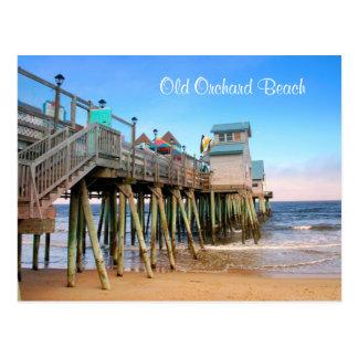 Postal vieja de Maine de la playa de la huerta