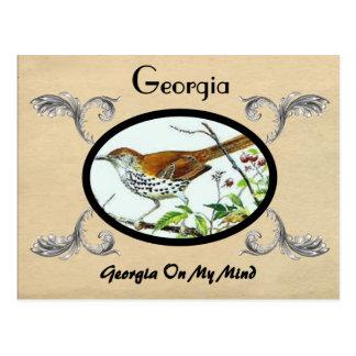 Postal vieja Georgia Stste de la apariencia