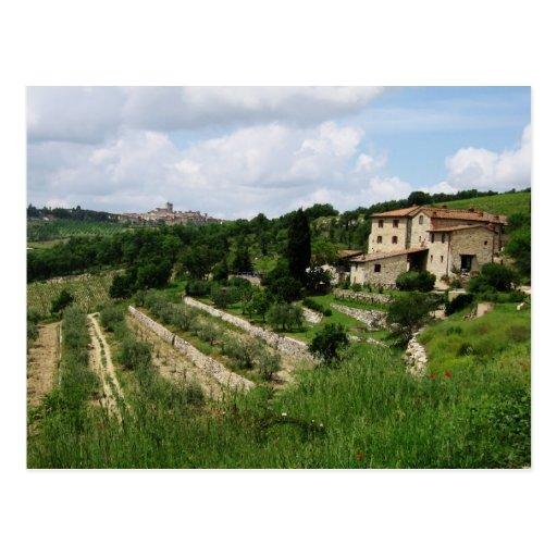 Postal - viñedo y ciudad toscanos de la colina