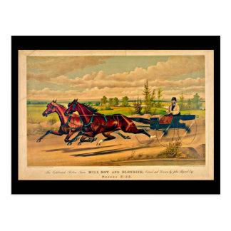 Postal-Vintage Boston Artwork-41 Tarjetas Postales