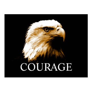 Postales audazes de Eagle calvo del valor de la di