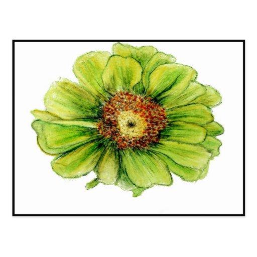 Postales botánicas de los dibujos
