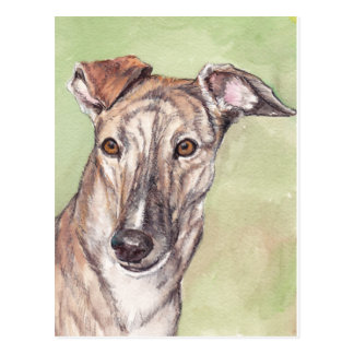 Postales Brindle del arte del perro del galgo