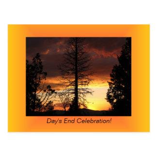 Postales de la puesta del sol de Silhoutte del árb