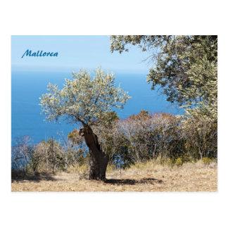 Postales de Mallorca