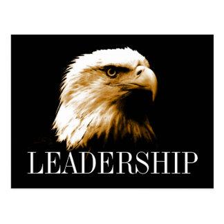 Postales de motivación de Eagle calvo de la direcc