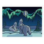 Postales del arte del oso nativo de la postal del