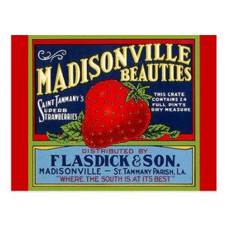 Postales del cajón de la fresa del LA de Madisonvi
