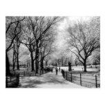 Postales del Central Park