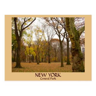 Postales del Central Park de las postales NYC de N