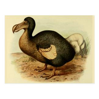 Postales del Dodo