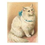 postales del gato del vintage