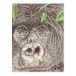 Postales del gorila