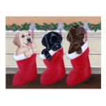 Postales del navidad de los perritos del labrador
