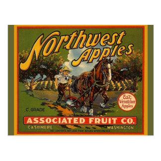 Postales del noroeste del caballo de proyecto de l