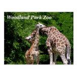 Postales del parque zoológico del parque del arbol