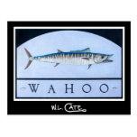 Postales del Wahoo