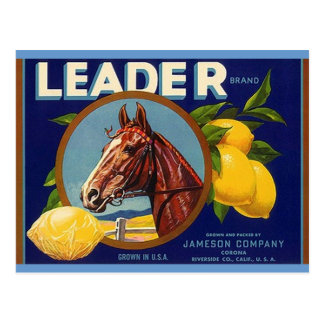 Postales excelentes de los limones del líder del c